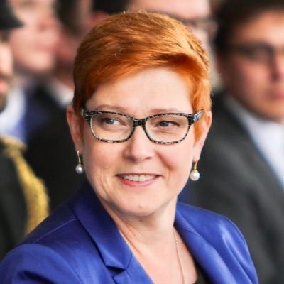 Australian Foreign Minister visits Luganville